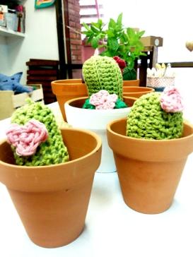 cactus al taller nl