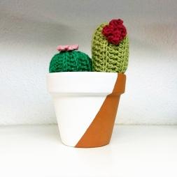 cactus ganxet mentacraft